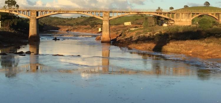 El Puente Gadea